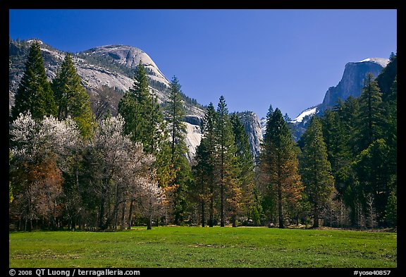 Meadow, North Dome, and Half Dome in spring. Yosemite National Park (color)