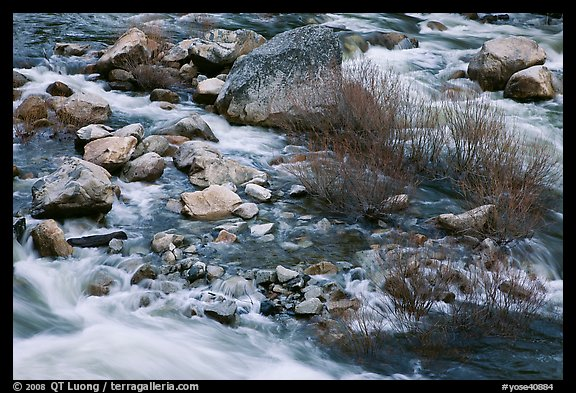 Rapids and shrubs, early spring, Lower Merced Canyon. Yosemite National Park (color)
