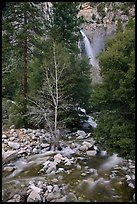 Lower falls, Cascade Creek. Yosemite National Park, California, USA.