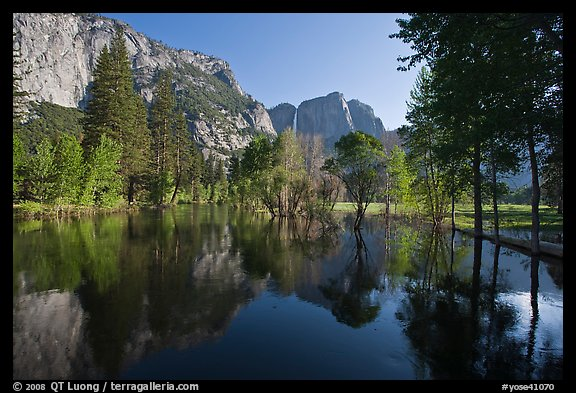 Swollen Merced River reflecting trees and cliffs. Yosemite National Park (color)