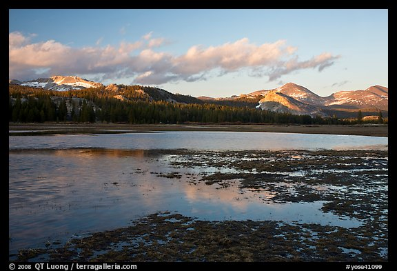 Flooded meadow in early spring at sunset, Tuolumne Meadows. Yosemite National Park (color)