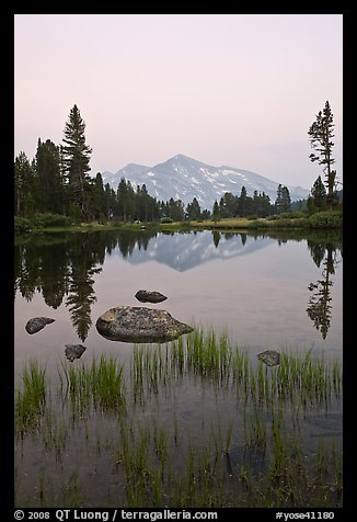Mammoth Peak reflected in tarn at sunset. Yosemite National Park (color)