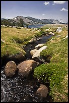 Boulders, stream, and lower Gaylor Lake. Yosemite National Park, California, USA.