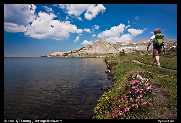 Woman hiker on the shore of Gaylor Lake. Yosemite National Park (color)