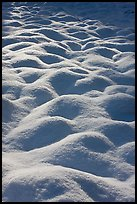 Snow mounds, Cook Meadow. Yosemite National Park ( color)