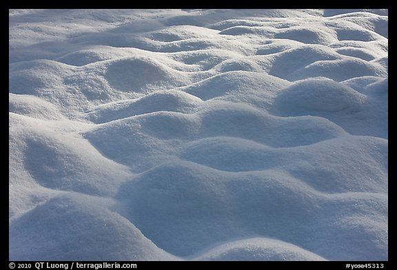 Snow pattern, Cook Meadow. Yosemite National Park (color)