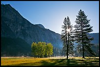 Sun and Ahwanhee Meadows in spring. Yosemite National Park, California, USA. (color)
