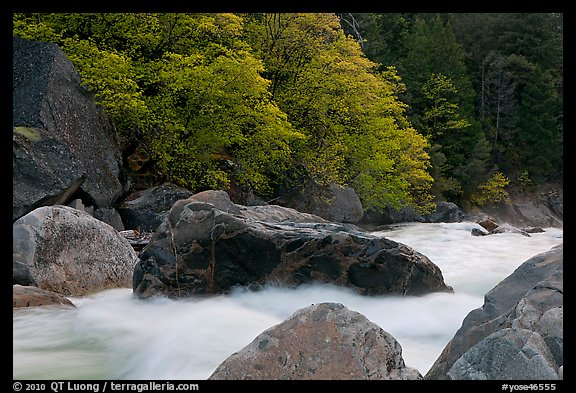 Merced River whitewater in spring. Yosemite National Park (color)