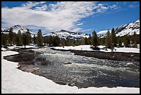 Creek flowing in snow-covered high country landscape. Yosemite National Park ( color)