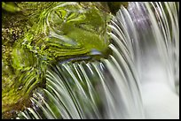 Fern Spring cascade. Yosemite National Park, California, USA. (color)
