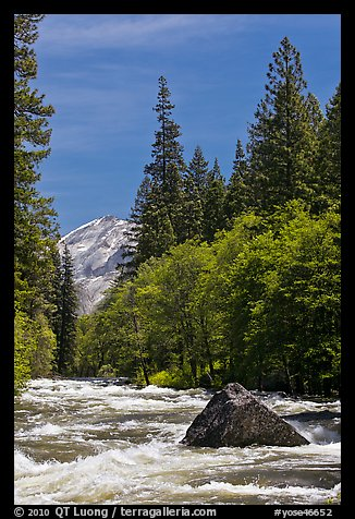 High waters and rapids in Merced River. Yosemite National Park (color)