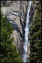 Trees, Ribbon Falls and cliffs. Yosemite National Park ( color)