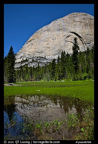 Half-Dome reflected in Lost Lake. Yosemite National Park (color)