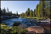 Lyell Fork of the Tuolumne River, afternoon. Yosemite National Park ( color)