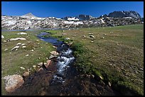 Meadow, stream, and Evelyn Lake. Yosemite National Park, California, USA. (color)
