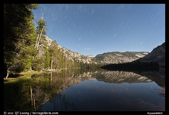 Merced Lake, tall trees, and stars. Yosemite National Park (color)