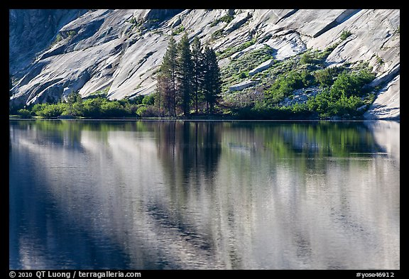 Trees and granite slabs reflected, Merced Lake. Yosemite National Park (color)