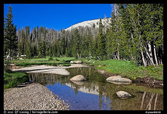 Stream in Long Meadow. Yosemite National Park (color)