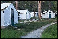Tuolumne Lodge tents. Yosemite National Park, California, USA. (color)