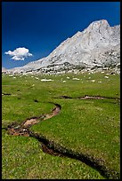 Alpine meadows, meandering stream, and Mount Conness. Yosemite National Park ( color)