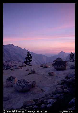 Glacial erratics, pine trees, Clouds rest and Half-Dome from Olmstedt Point, sunset. Yosemite National Park (color)
