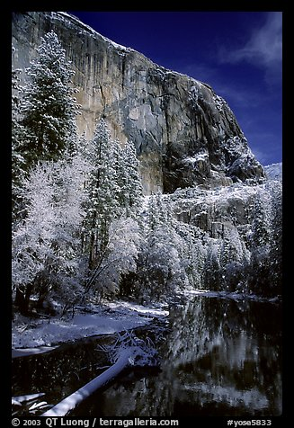 East Face of El Capitan and Merced River in winter. Yosemite National Park (color)