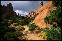 Sandy wash and rocks, Klondike Bluffs. Arches National Park, Utah, USA.