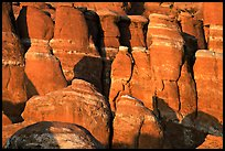 Sandstone fins at Fiery Furnace, sunset. Arches National Park ( color)