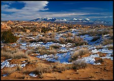 Petrified dunes, ancient dunes turned to slickrock, and La Sal mountains, winter afternoon. Arches National Park, Utah, USA.