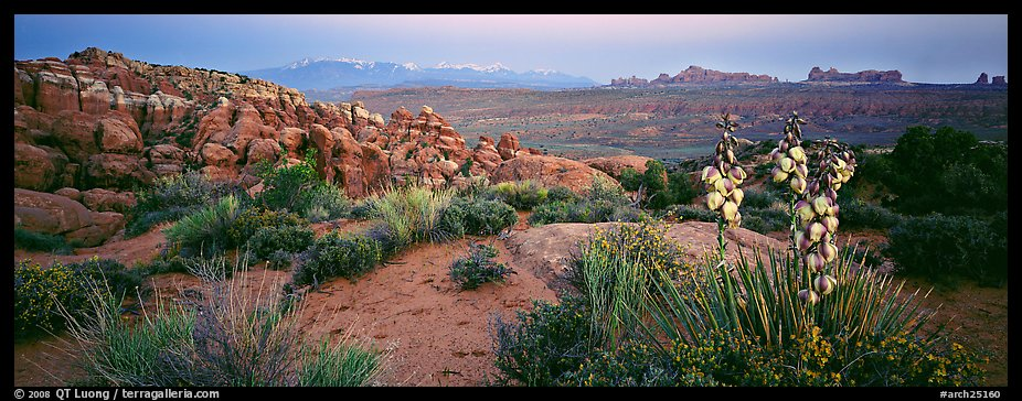 Fiery Furnace sandstone fins and mountains at dusk. Arches National Park (color)