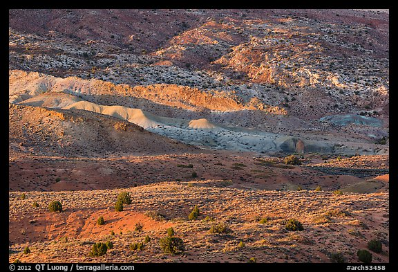 Last light on shrubs and rocks. Arches National Park (color)