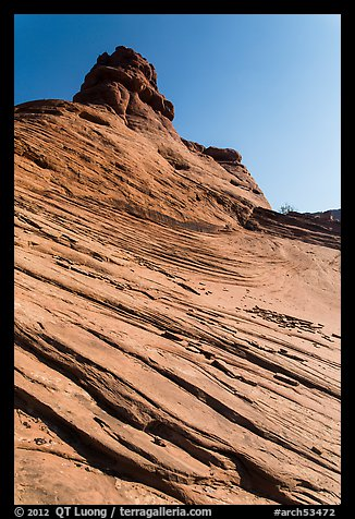 Sandstone swirls. Arches National Park (color)