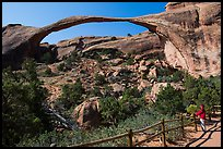 Visitor looking, Landscape Arch. Arches National Park, Utah, USA. (color)