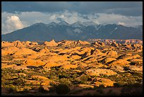 Petrified dunes and cloudy La Sal mountains. Arches National Park ( color)