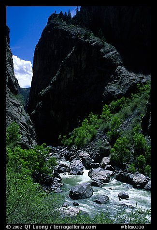 Gunisson river near the Narrows. Black Canyon of the Gunnison National Park (color)