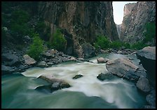 Gunisson River flowing beneath steep canyon walls. Black Canyon of the Gunnison National Park, Colorado, USA.