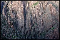 Striated rock walls. Black Canyon of the Gunnison National Park, Colorado, USA. (color)