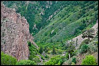 East Portal in spring. Black Canyon of the Gunnison National Park ( color)