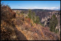Oak Flat Trail. Black Canyon of the Gunnison National Park ( color)