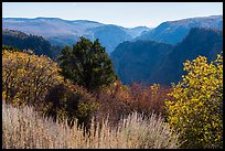 Tomichi Point in the autumn. Black Canyon of the Gunnison National Park ( color)