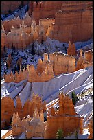 Snowy ridges and hoodoos, Bryce Amphitheater, early morning. Bryce Canyon National Park, Utah, USA.