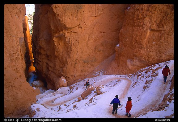 Hikers descending trail in Wall Street Gorge. Bryce Canyon National Park, Utah, USA.