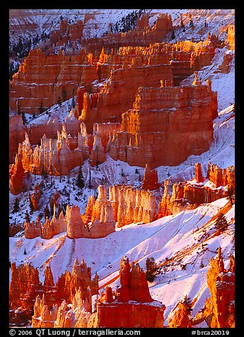 Hoodoos and snow from Sunrise Point, winter sunrise. Bryce Canyon National Park (color)