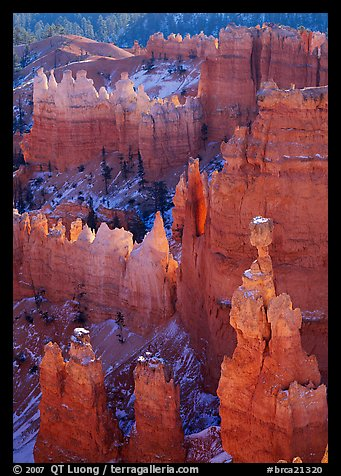 Thor Hammer and hoodoos, mid-morning. Bryce Canyon National Park (color)