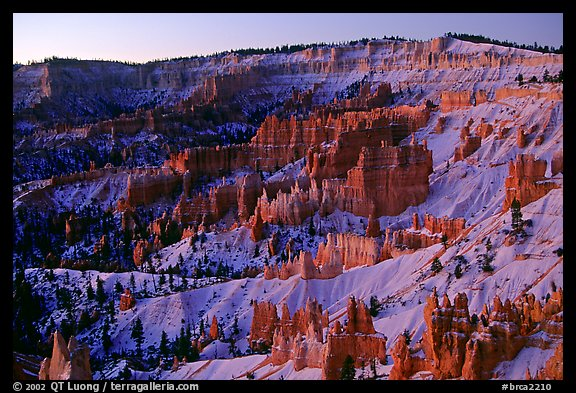 Bryce amphitheater from Sunrise Point, dawn. Bryce Canyon National Park (color)