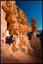 Pink limestone hoodoos, Water Canyon. Bryce Canyon National Park ( color)
