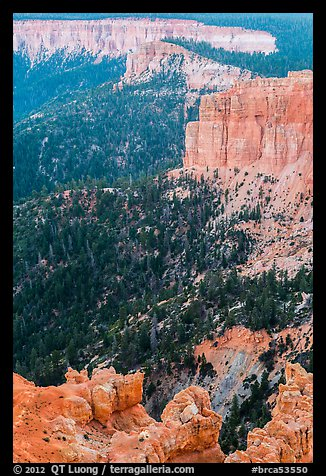 Pink cliffs. Bryce Canyon National Park (color)