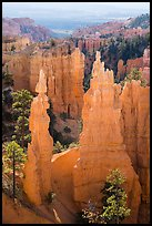Hoodoos and cirque, Fairyland Point. Bryce Canyon National Park ( color)