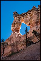 Tower Bridge. Bryce Canyon National Park ( color)