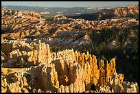 View from northern Rim Trail, late afternoon. Bryce Canyon National Park ( color)